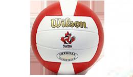 WilsonsGoldVball 260x150